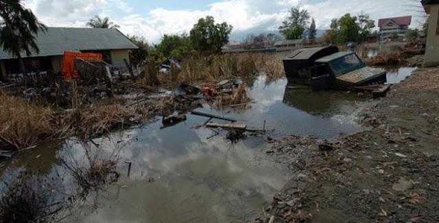 BNPB: Gempa Aceh Tewaskan 5 Warga