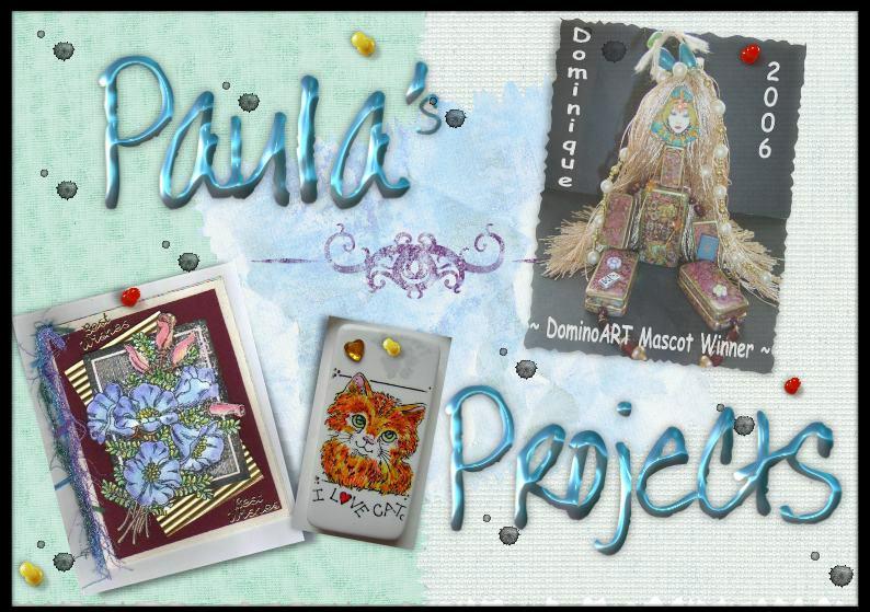 Paula S-M Projects