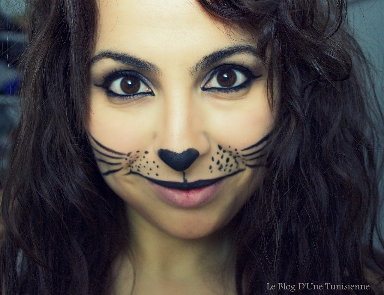 Maquillage de femme chat - Maquillage halloween chat ...