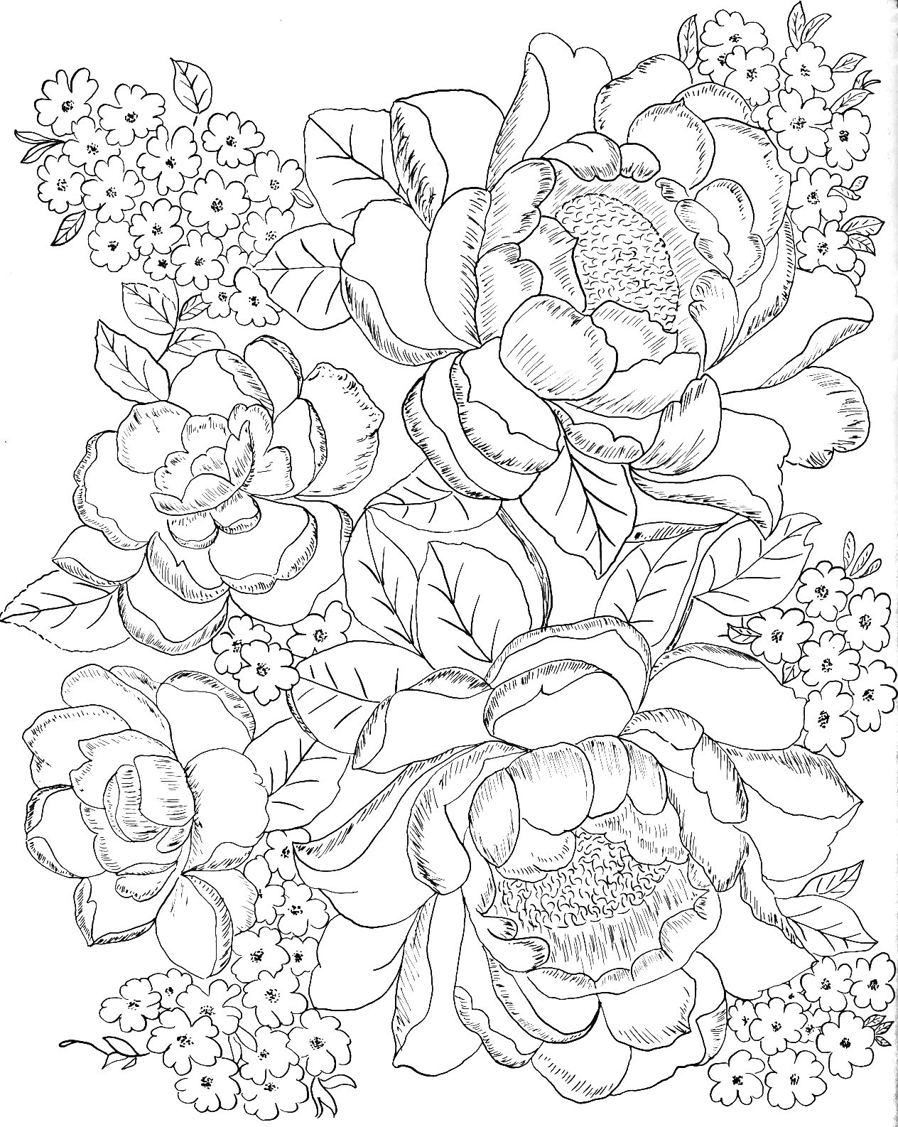 This is a graphic of Ridiculous Printable Coloring Pages for Adults Flowers