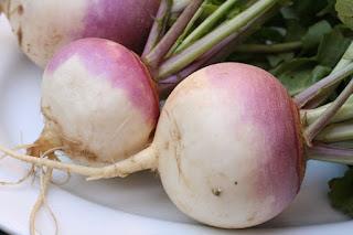 Turnip/Shalgam