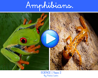 http://dl.dropbox.com/u/61199074/CBM/flash/Science2_Amphibians.swf
