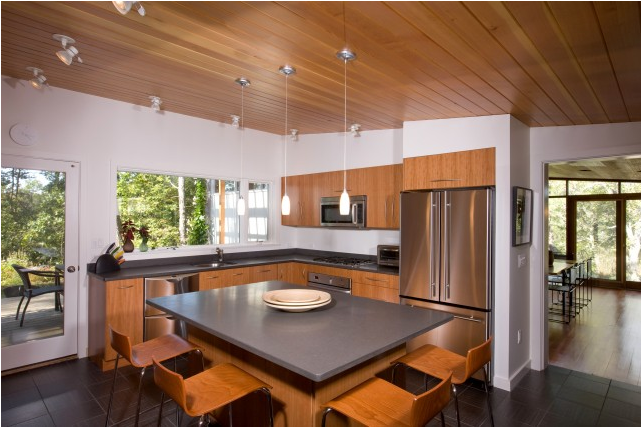 Mid century modern kitchen ideas room design ideas for New kitchen remodel ideas