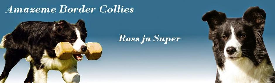 Super x Ross