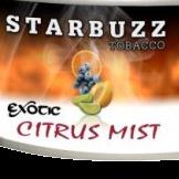 STARBUZZ EXOTIC CITRUS MIST HOOKAH SHISHA TOBACCO