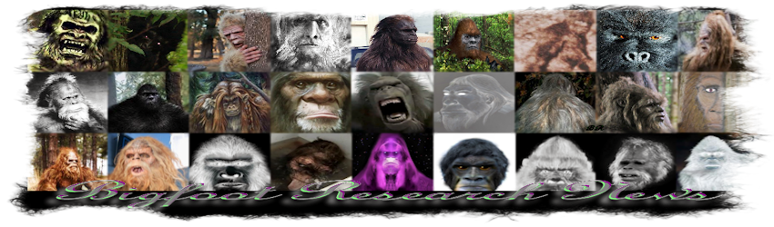 Bigfoot Research News