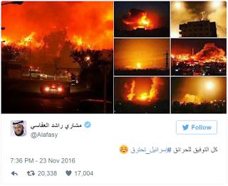 Jihad do Incêndio Florestal: incêndio criminoso pela causa de Alá
