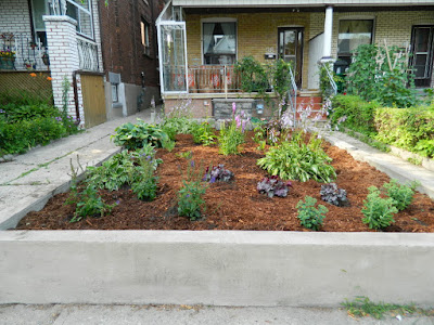 Garden clean up Bloordale after Paul Jung Gardening Services Toronto