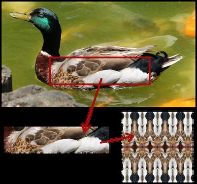 Mallard Feathers Pattern