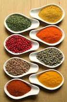 SPICES OF INDIAN CUISINE