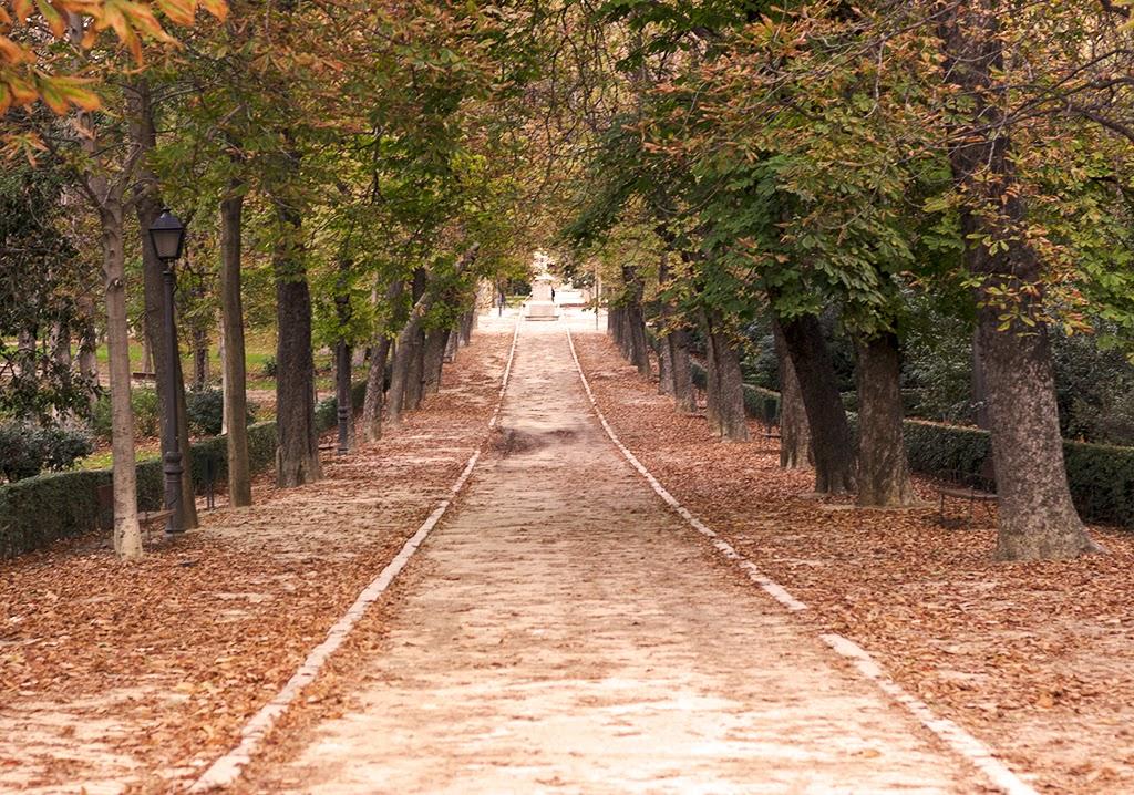 sesión fotográfica El Retiro Madrid