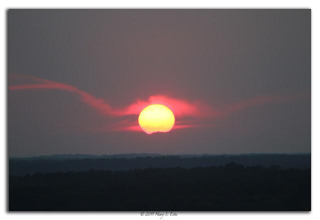 Wide Eyed Sun