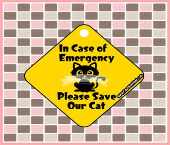 Emergency Sign Cat