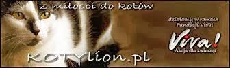 Kotylion