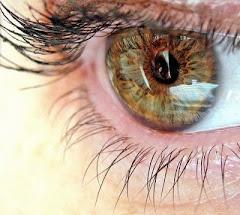 Ojos de Helena