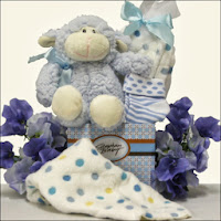 Baby Boy Baby Shower Gift
