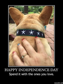 cream french bulldog being patriotic for the july 4th independence day celebration hand nail art red white blue polish starfish nautical collar