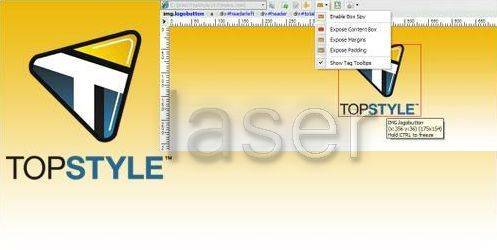 TopStyle 4 ~ Pick Mediafire | Download Free Mediafire Links