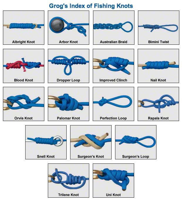Survival basics and how to survive knots that will for Fishing knots easy