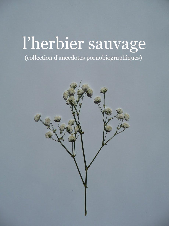 l'herbier sauvage vehlmann