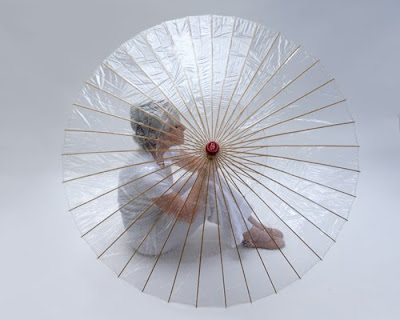 Unusual Umbrellas and Creative Umbrella Designs (17) 8