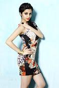 Vedhika glamorous photos gallery-thumbnail-12