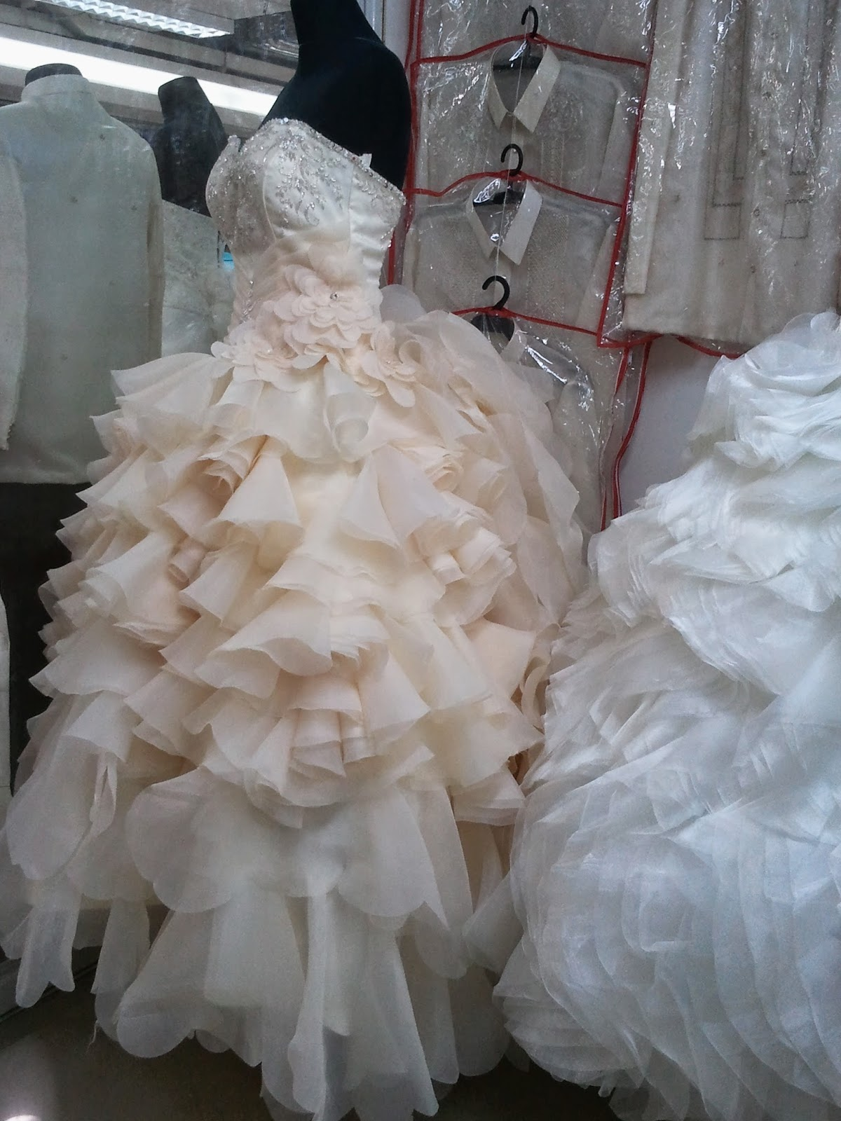 Our Journey to the Big Event: Gown Searching in Divisoria