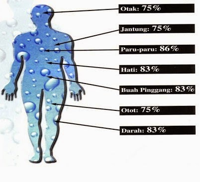 Manfaat Air Bagi Kehidupan Manusia - Bahan Penjernih Air