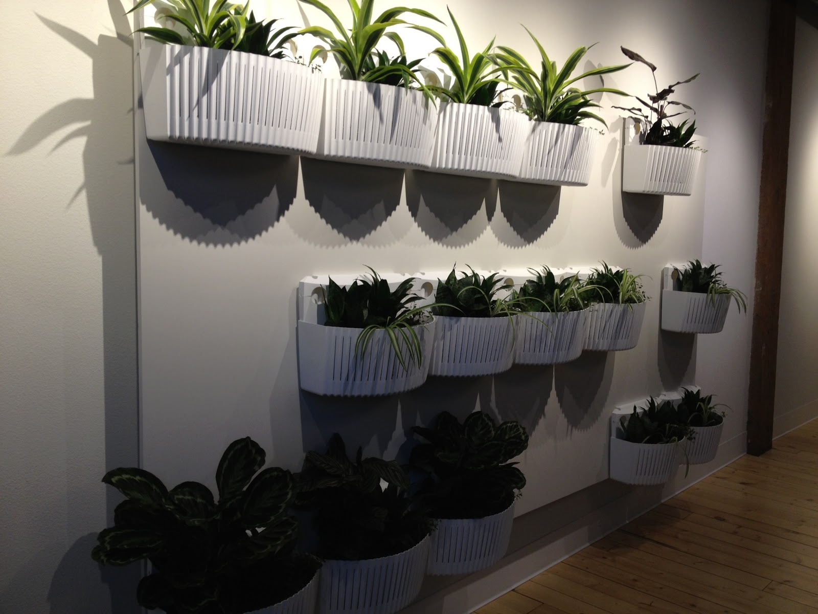Superb Old Fashioned Woolly Pocket Living Wall Planter 2 Review Picture .