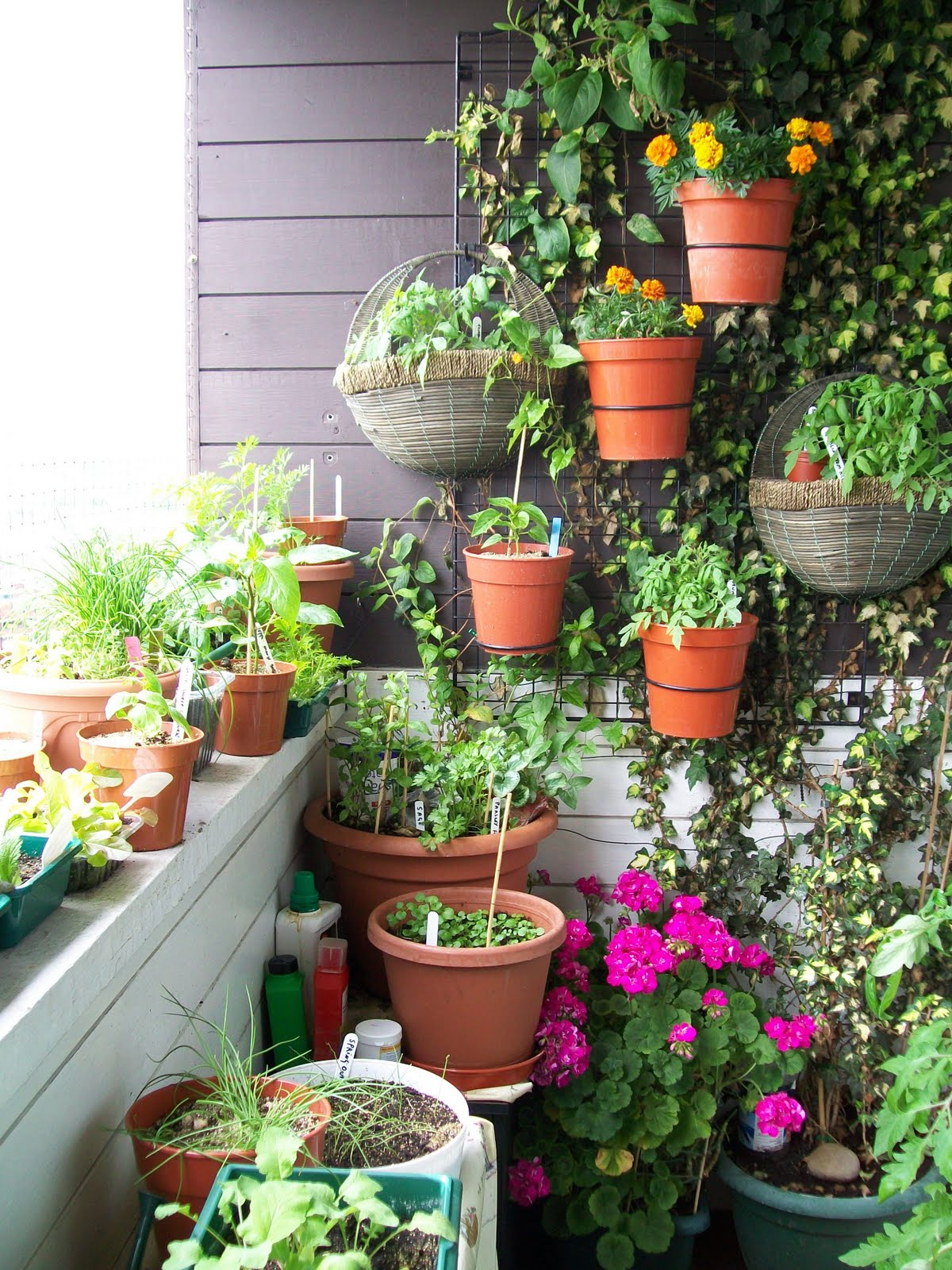 Small garden ideas beautiful renovations for patio or for Garden renovation ideas