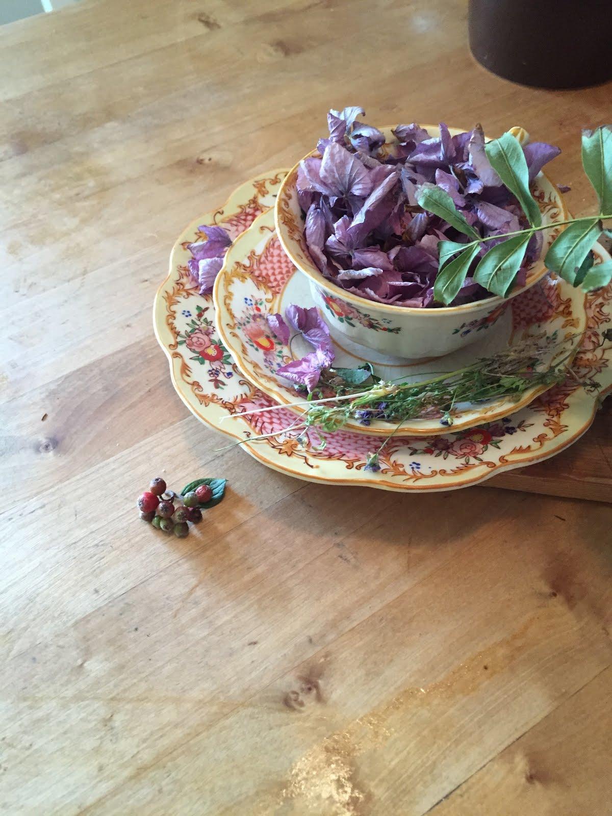 Gammel kopp fylt med naturen