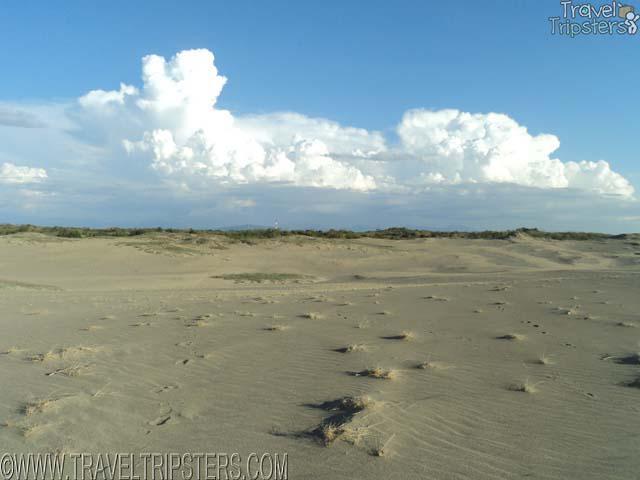 paoay sand dunes sandsurfing
