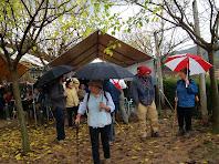A Cal Planell la pluja ens torna a aparèixer