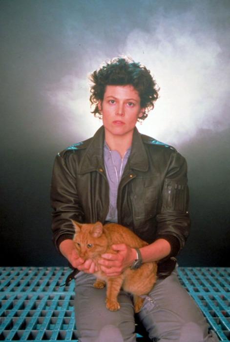 Ripley e o gato Jones