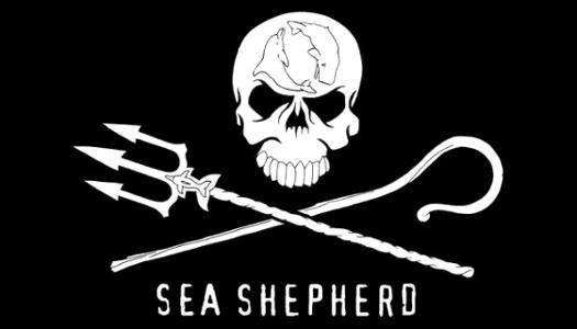 http://www.seashepherd.org/