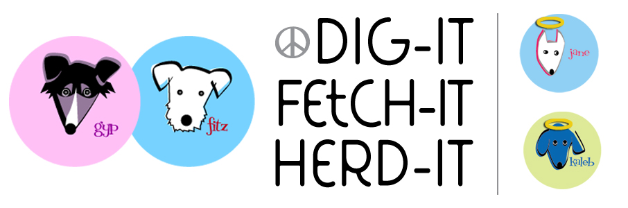 Dig-it Fetch-it Herd-it