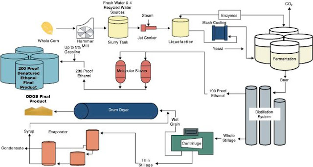 ethanol production by fermentation