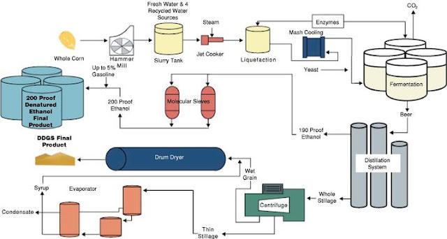 ethanol production by fermentation