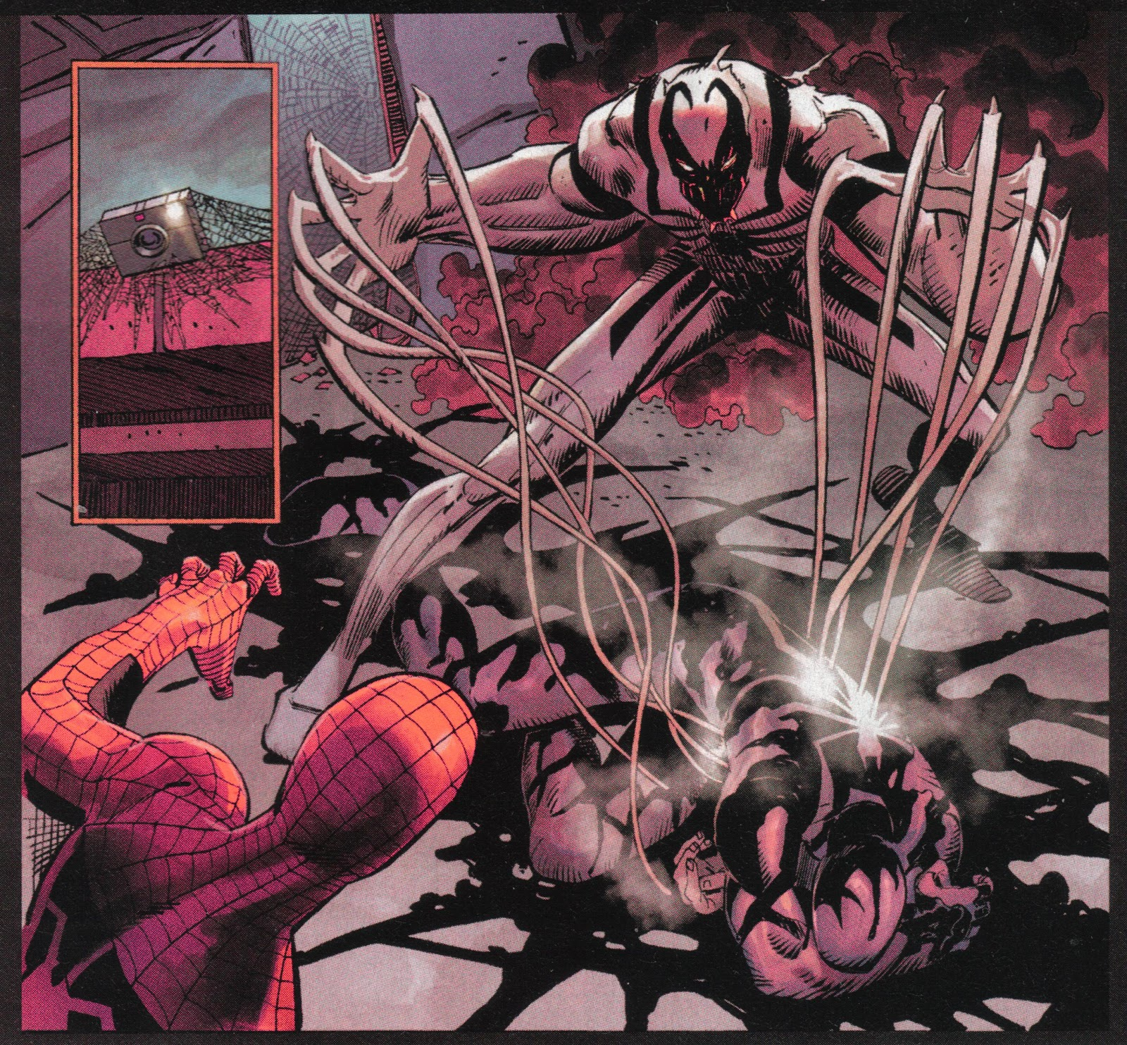 Mind Bomb: Symbiotes 101: The Biology and Behavior of a ...