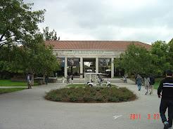 Huntington Library  Gardens