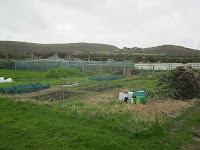 St Ives Allotment