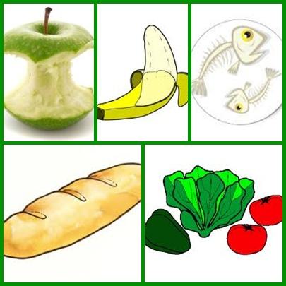 Basura organica animada imagui for Suelo organico dibujo animado