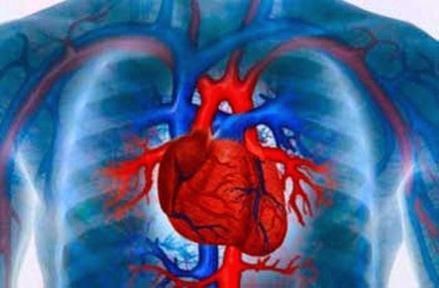 necropsista Sergio Honorio: Temas de IML: anatomia patologica do ...