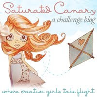 Saturated Canary Challange Blog