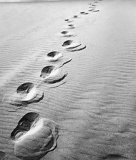 ko se rodiš │ ko umreš │ in samotna pot vmes