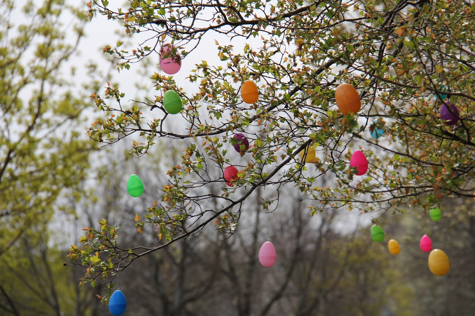Sometimes creative easter egg tree How to make an easter egg tree