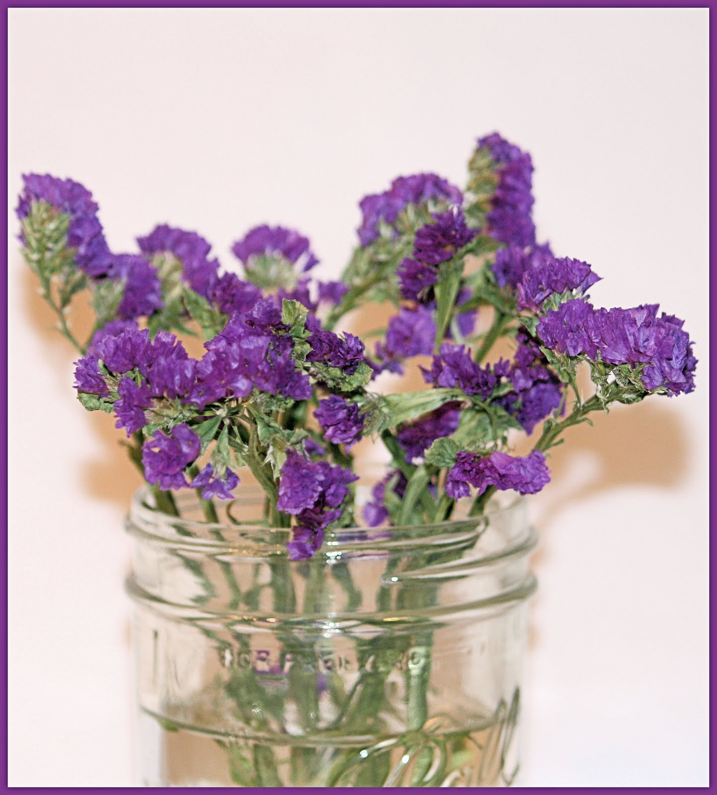 Carlettas Captures Purple Statice A Filler Flower