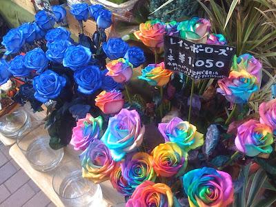 16 'قوس قزح' من أجمل الزهور التي قد تراها   حقن الزهور بصبغات مختلفة