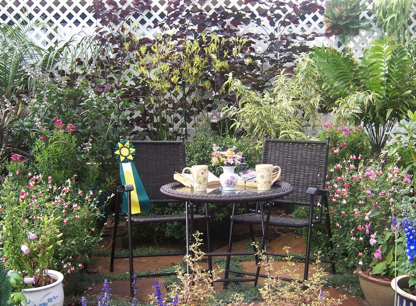 The 2 minute gardener photo container patio garden for Small private garden ideas