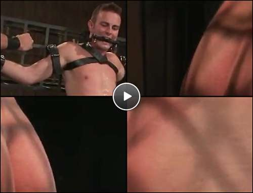free hd gay video video